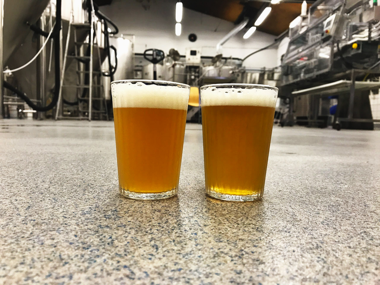 Two glasses of beer on the Beerbliotek Brewery floor. On the left is a hazy New England IPA and on the right is a clear West Coast IPA.